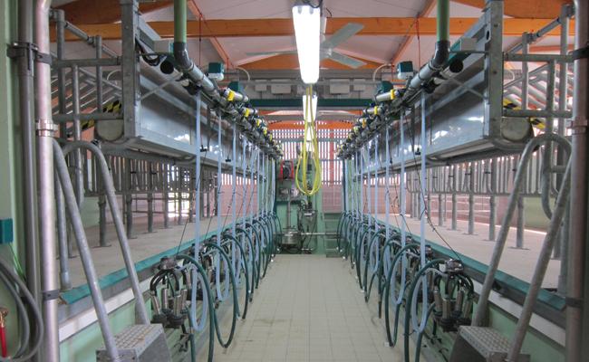 Salle de traite par l'arrière 2 x 10 postes vaches